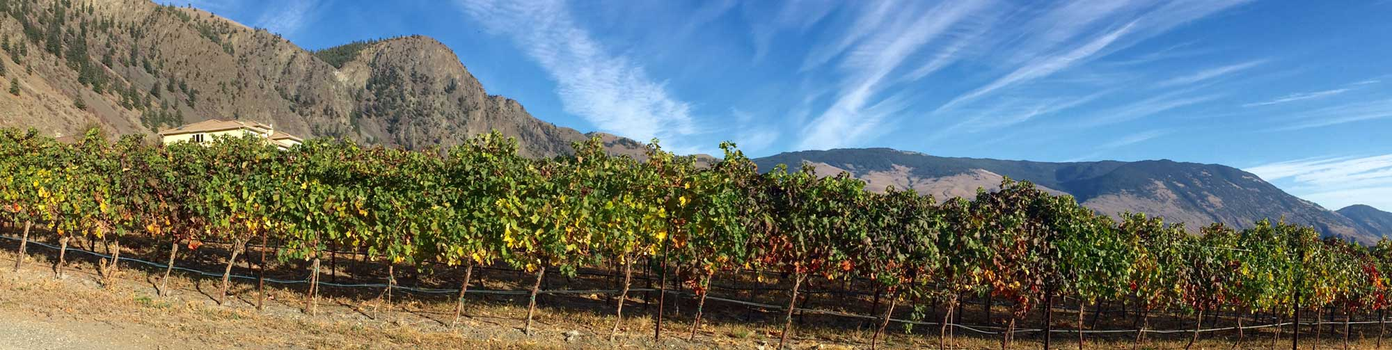 Our Charter: Similkameen Independent Winegrowers